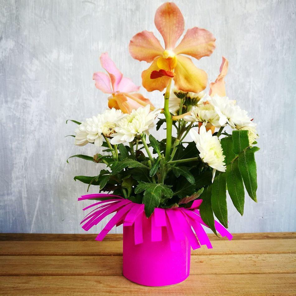Flower Nature Pink Color Madewithlove AllSaintsDay Orchid Flower Arrangement Petal November1 First Eyeem Photo