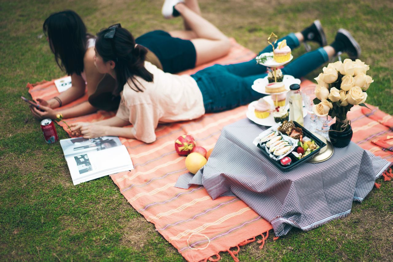 Adult Day Drink Friendship Grass Grass Horizontal Lunch Lunch Box One Person One Woman Only Only Women Outdoors People Person Picnic Picnic Blanket Togetherness