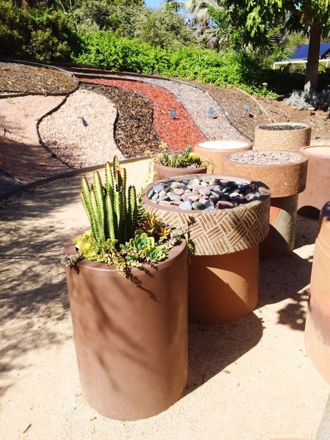 Nature Walk Flowers,Plants & Garden Water Conversation Park. Urban Spring Fever