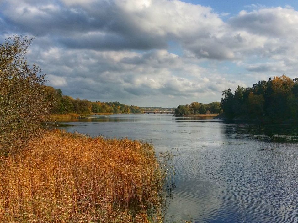 Beautiful stock photos of river, Cloud, Day, Forest, Nature