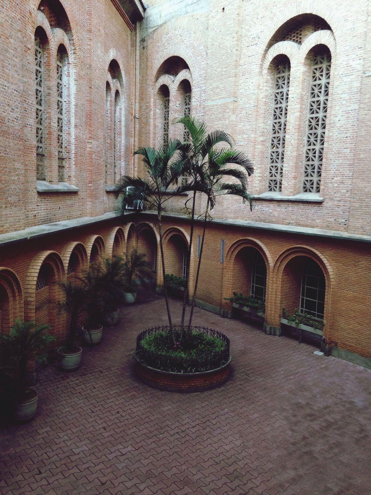 Aparecidadonorte Basilica Brasil Saopaulo