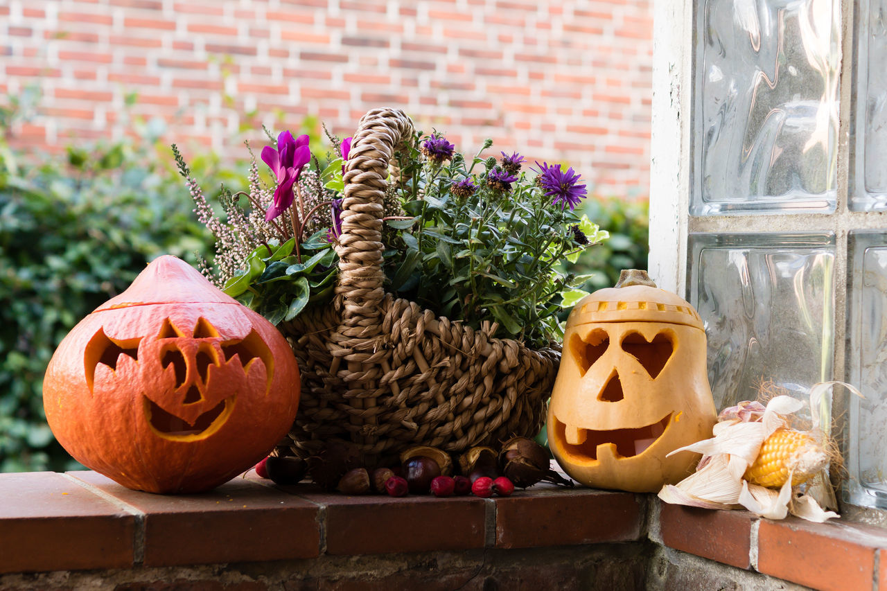 Autumn Basteln Dekoration Halloween Home Sweet Home No People Outdoors Pumpkin