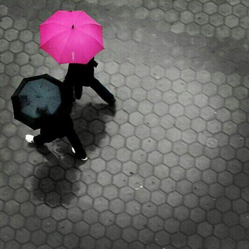Rain Pink Drops Rainy