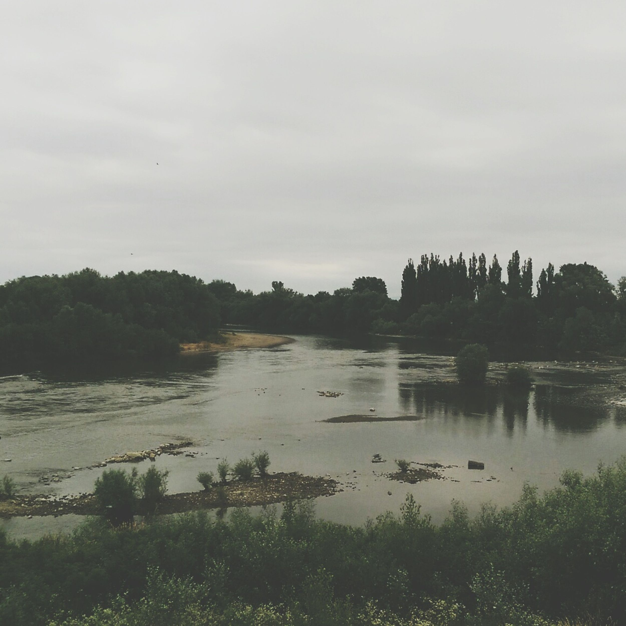 Arad River Nature Rainy Day Walk