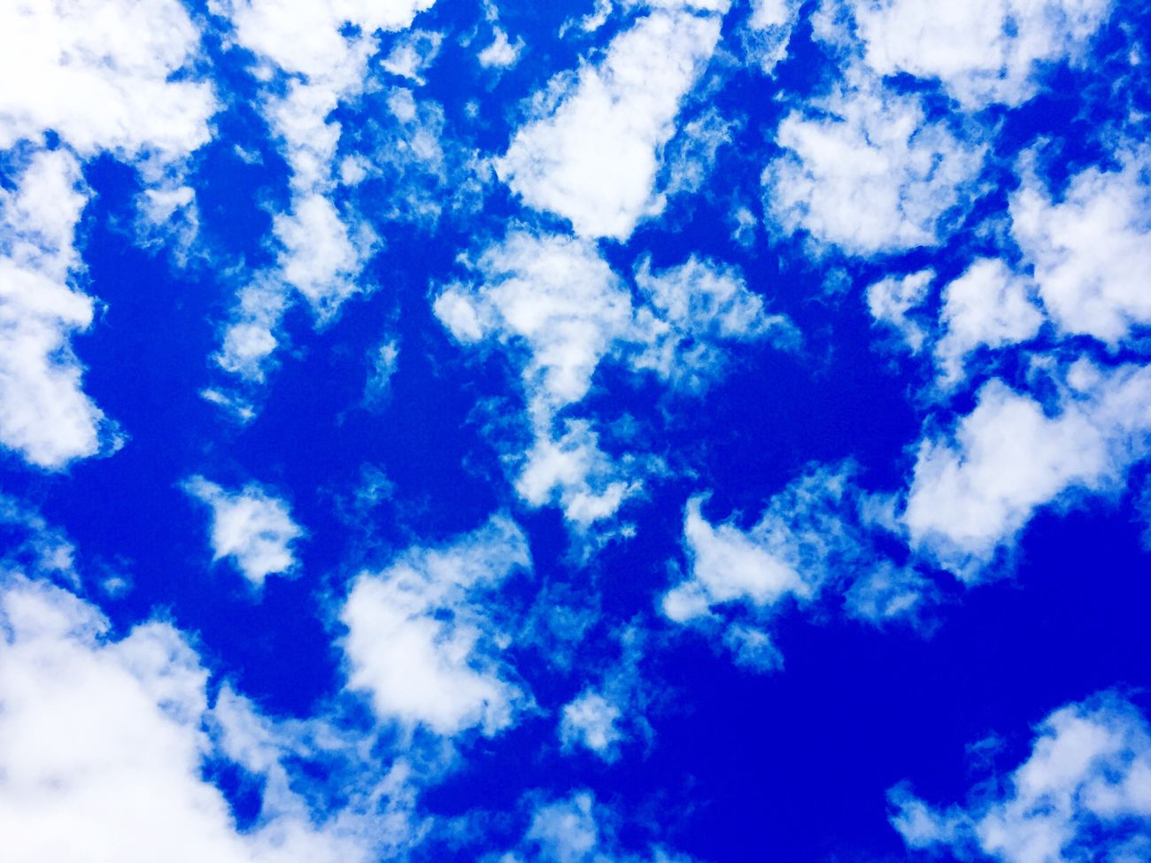 Blue Backgrounds Sky Cloud - Sky Nature Beauty In Nature Low Angle View Full Frame Scenics White Color Sky Only No People Day Tranquility Outdoors Sky And Clouds Sky_collection Himmel Himmel Und Wolken Himmelskunst Himmel♥ небо небо облака небо и облака облака