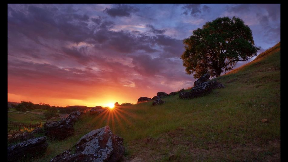 Sunrise in Brentwood Sunset Tree Beauty In Nature Landscape Sky Field No People Outdoors Sun Scenics Nature Mountain Tree Rocks