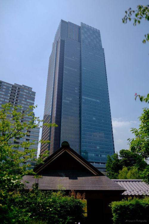 Tokyo Midtown Tokyo Midtown Park Building Buildings Fujifilm_xseries FUJIFILM X-T1 XF 16mm F1.4 R WR TOWNSCAPE EyeEm