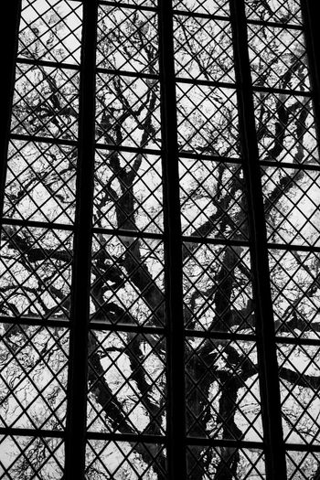 Out Of The Window Tree Silhouette Silhouettes Of Trees Church Window Blackandwhite Black And White