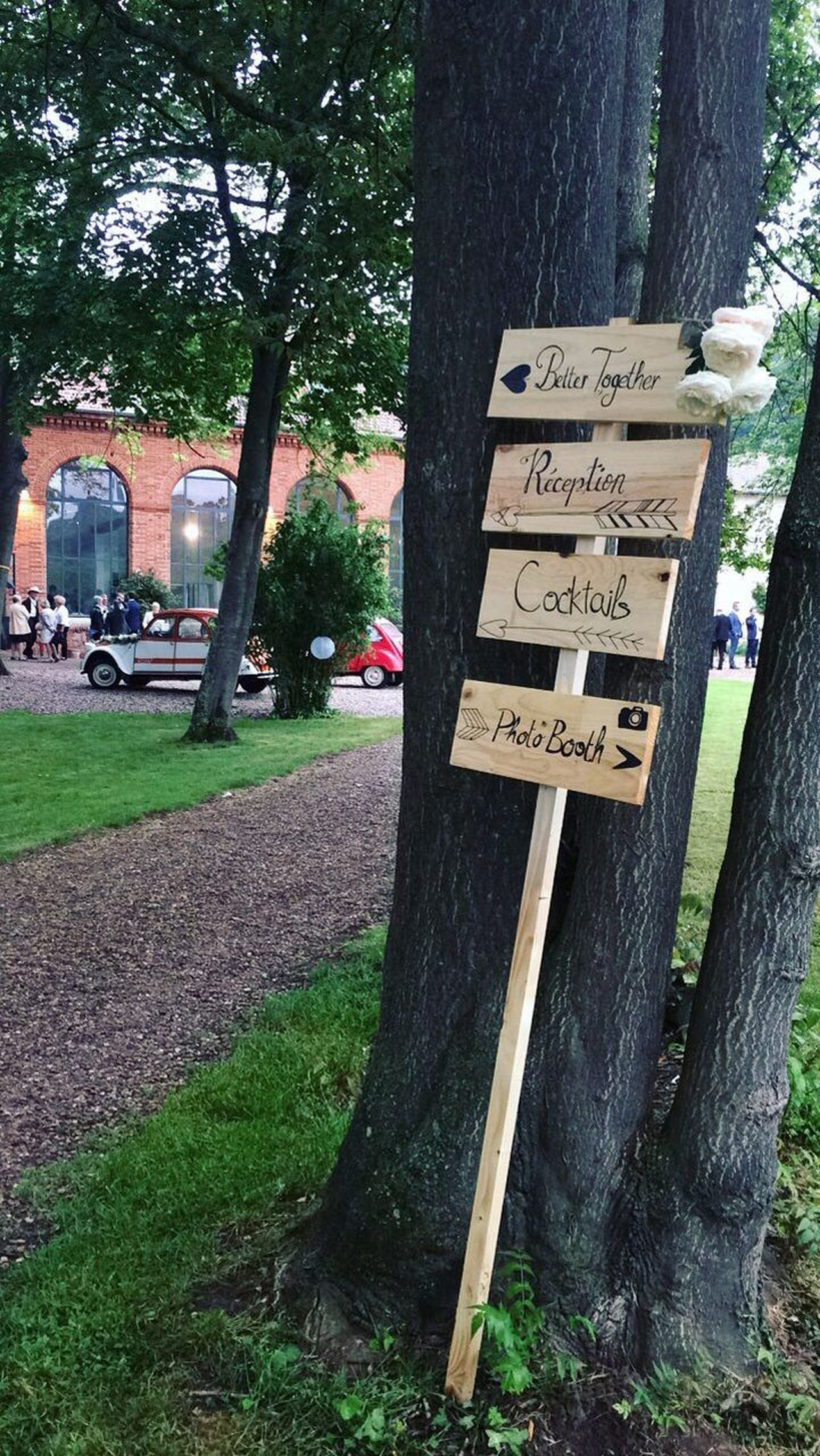 Wedding day ! Text Communication Western Script Tree Day Outdoors No People Wood - Material Tree Trunk Grass Nature Close-up Wedding Wedding Day 4L Old Car