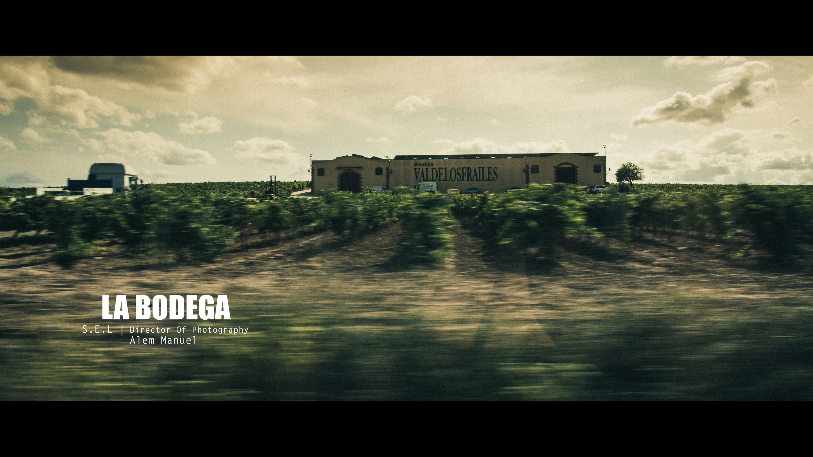 #Bodegadoveio #bodegasiniesta #fincaelcarril #fuentealbilla #cinematic #drinks #sunset #sun #clouds #skylovers #sky #nature #beautifulinnature #naturalbeauty #photography #landscape #travel Outdoors