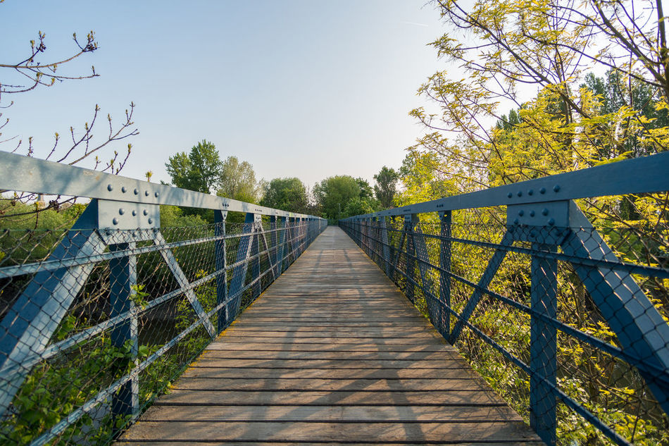 Beauty In Nature Clear Sky Day Footbridge Nature No People Outdoors Railing Scenics Sky The Way Forward Tranquility Tree