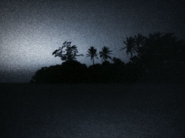 Night Sky Landscape Scenics Outdoors Nature Tree No People Star - Space Blackandwhite Photography Blurred Motion Black Color Eyeem Photography EyeEmNewHere Move On Eyeem PhonePhotography Goa India