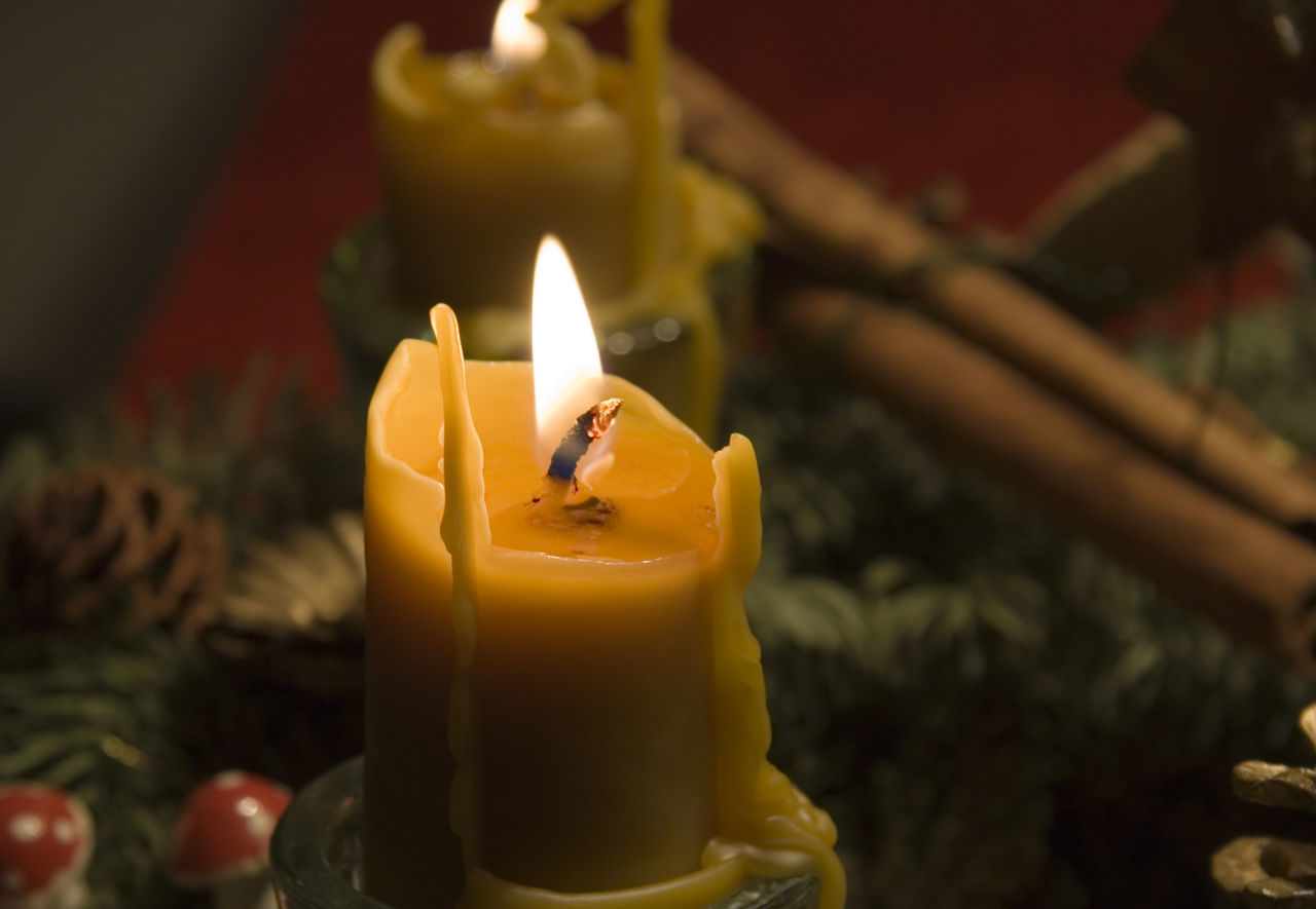 beeswax candles on an advent wreath - romantic lighting Advent Advent Advent Wreath Beeswax Beeswax Candle Burning Candle Candle Candlelight Candles Celebration Christmas Close-up Cozy Decoration Flame Focus On Foreground Heat - Temperature Indoors  Lighting No People Romantic Romantic Light Wreath Xmas