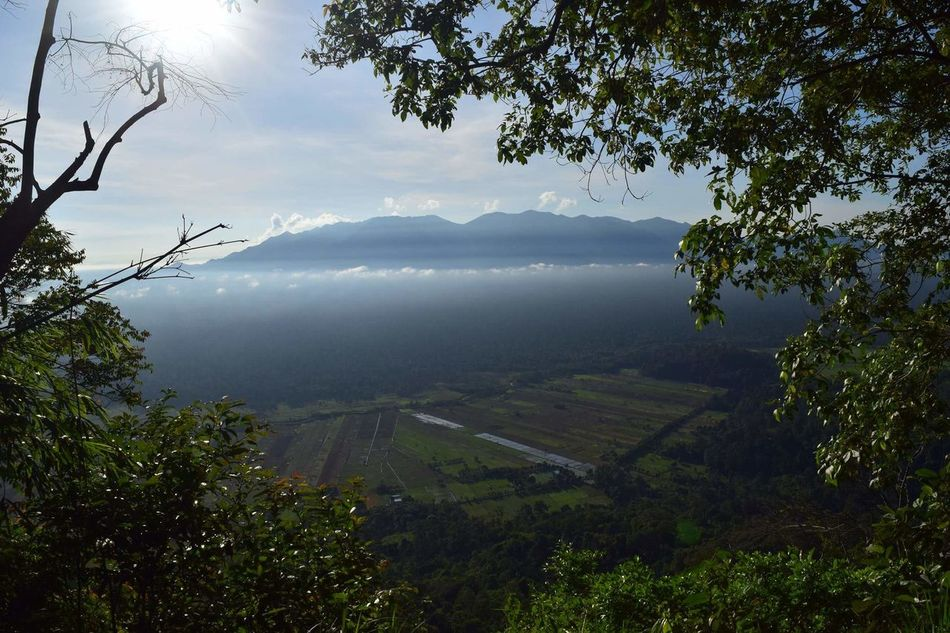 Gunung Palung national park. Sedehan, Indonesia, 2016. Nature Photography INDONESIA The Purist (no Edit, No Filter) No Filter, No Edit, Just Photography No People Borneo National Park Forest Travel Photography The Great Outdoors - 2016 EyeEm Awards Gunung Palung