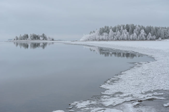 a cold day by the lake Beauty In Nature Cold Cold Temperature Day Frozen Ice Lake Landscape Nature No People Norrbotten Norrbotten Sweden Norrland Northern Sweden Outdoors Reflection Sky Snow Tranquil Scene Tranquility Tree Water Weather Winter