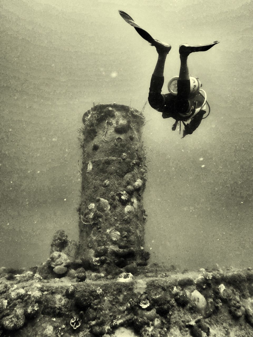 water, underwater, day, one person, outdoors, puddle, full length, men, undersea, people