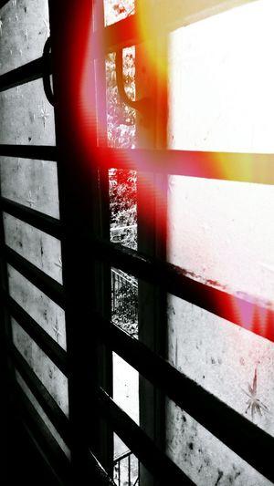 Leak Monochrome Window