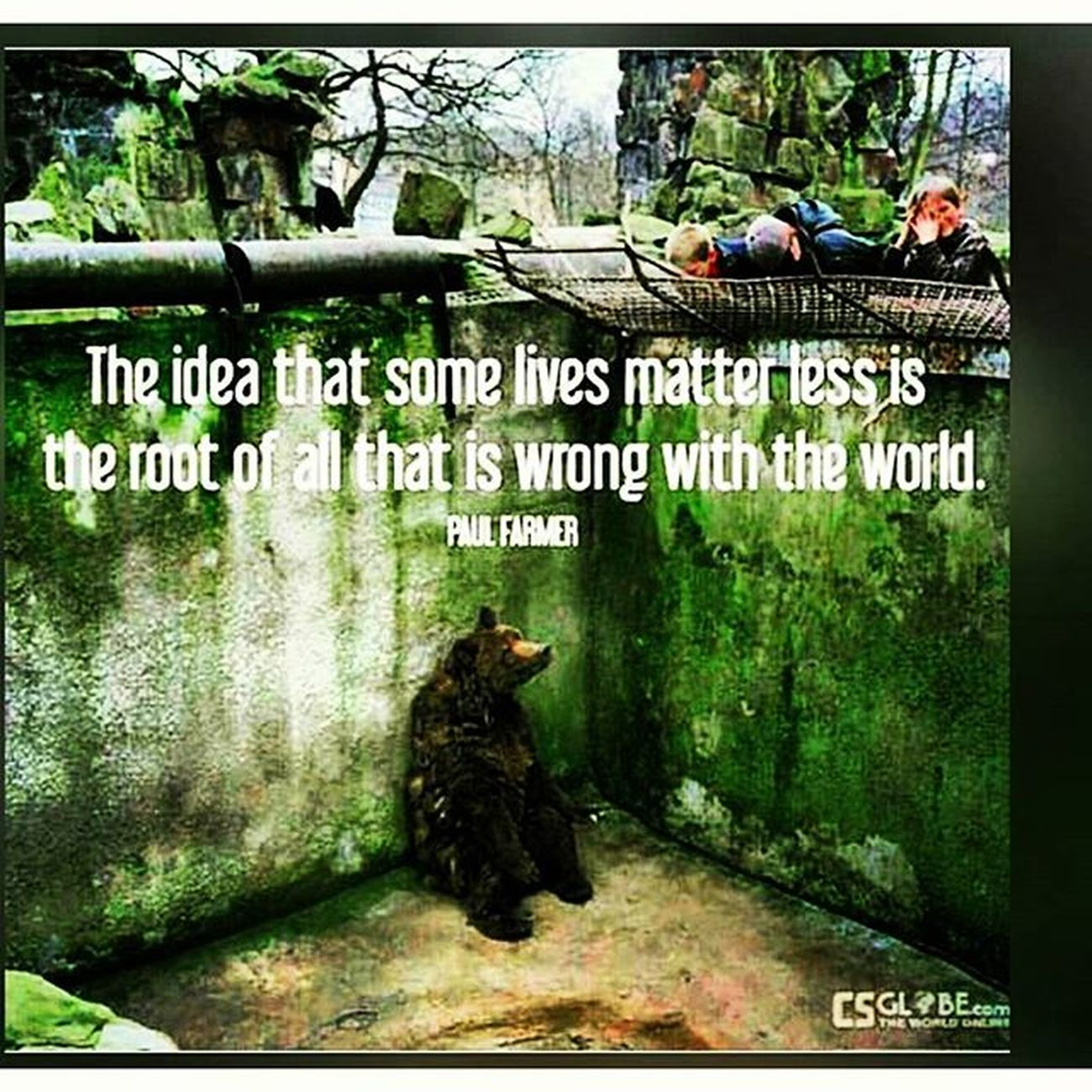 Alllifematters Animalequality Animalsrights Humanrights waketheeffup mystory114