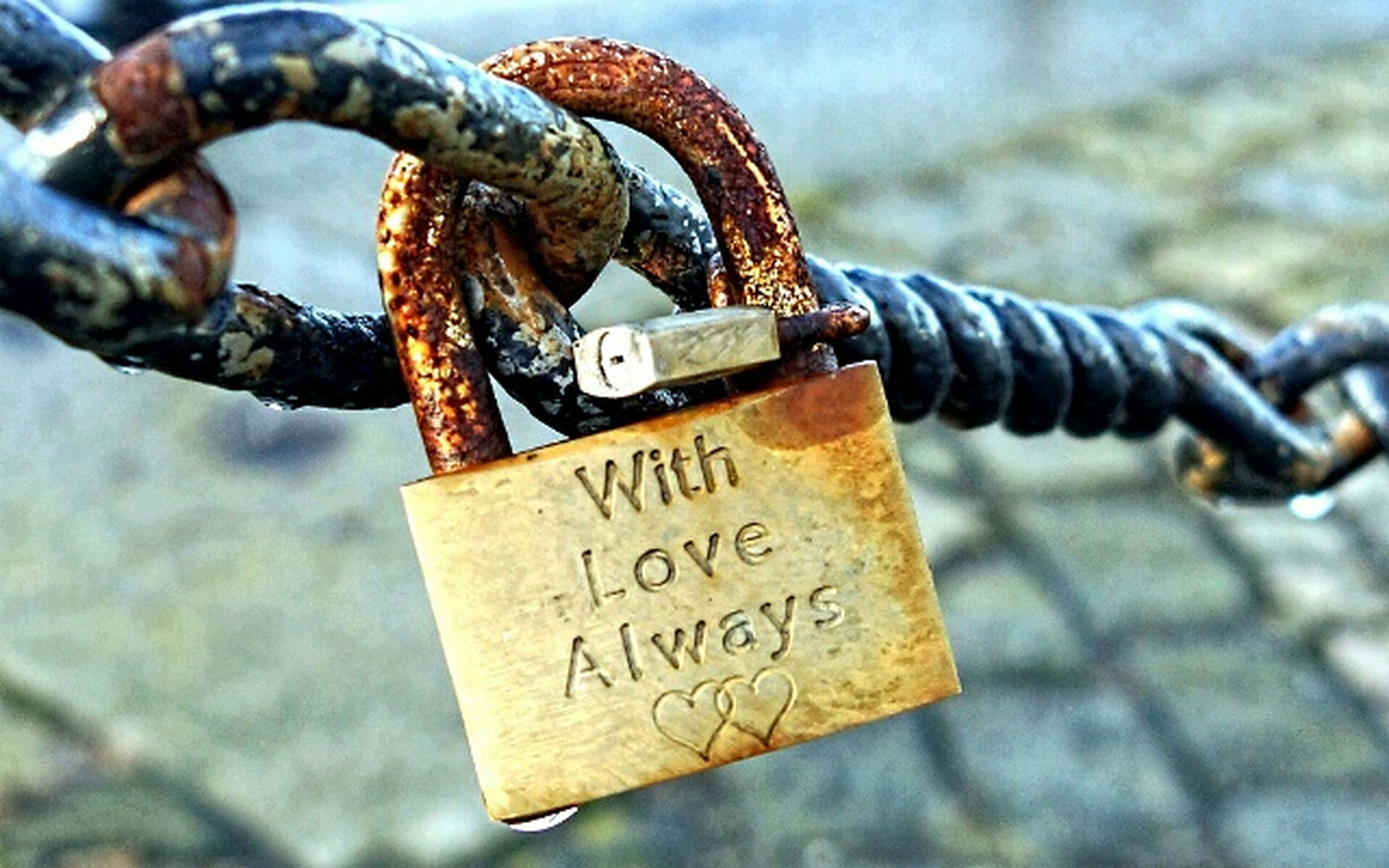 metal, padlock, rusty, focus on foreground, close-up, security, safety, chain, lock, protection, metallic, text, communication, fence, connection, strength, love, old, day, western script
