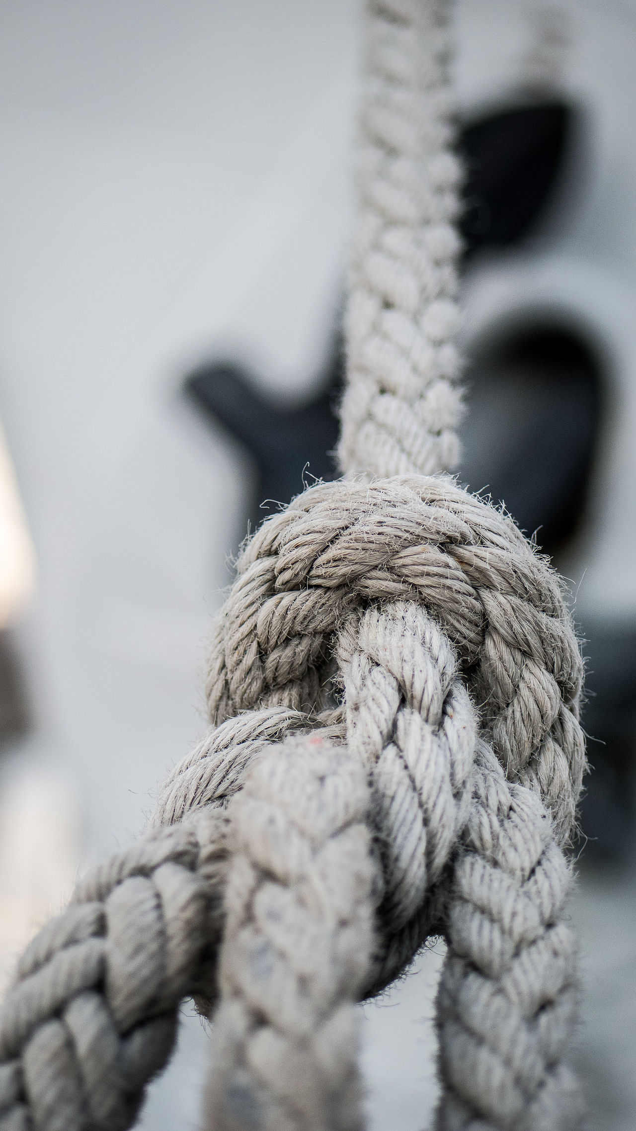 The ropes of an old ship in Finland :) Close-up Day Detail Details Textures And Shapes Rope Ropes Finnish  Ships⚓️⛵️🚢 Ship Ships Ships🚢 Finnland Ropes And Lines Depth Of Field DEP Textured  Finland♥ Finland Finlandlovers Finlandia