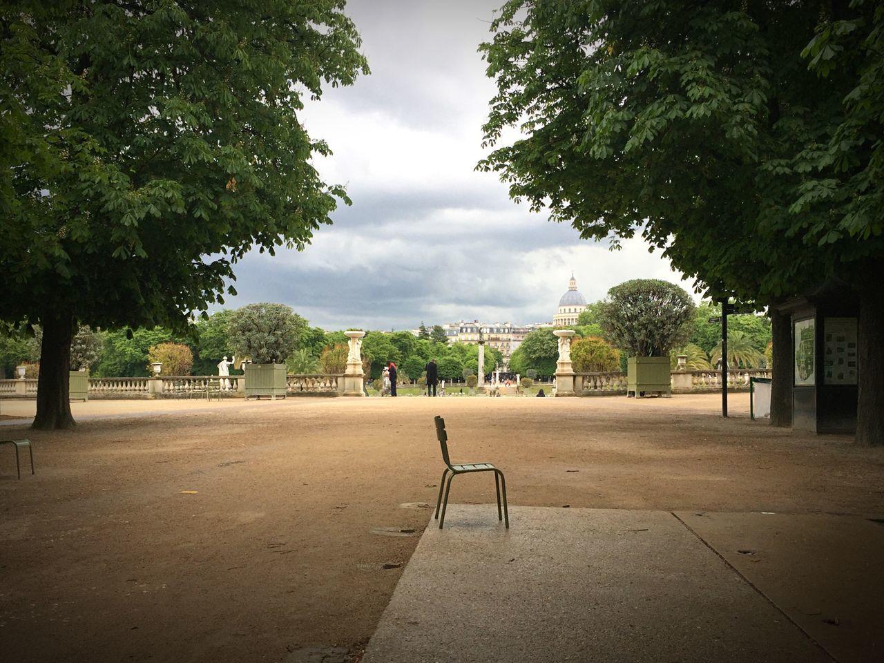 Paris Park Jardin Du Luxembourg Chair Trees Outdoors Nature