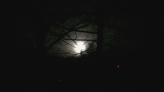Moon Morning Darknessfading Dawn Daylightapproaches Moonlight Trees Wintermoon IPhoneography Tennessee Mountains