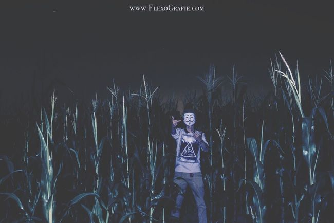 Don't take this Personal Folks, its more about the Expression about the Whole Situation around the World. There is sooo much wrong Goin on Around the Globe. SPREAD LUV NOT WAR. DROP CUPCAKES NOT BOMBS Light And Shadow Nature Scenics Alwaysonthemoove Outdoors Tranquility Night Dark Beauty In Nature Corn Cornfield Fields OBEY