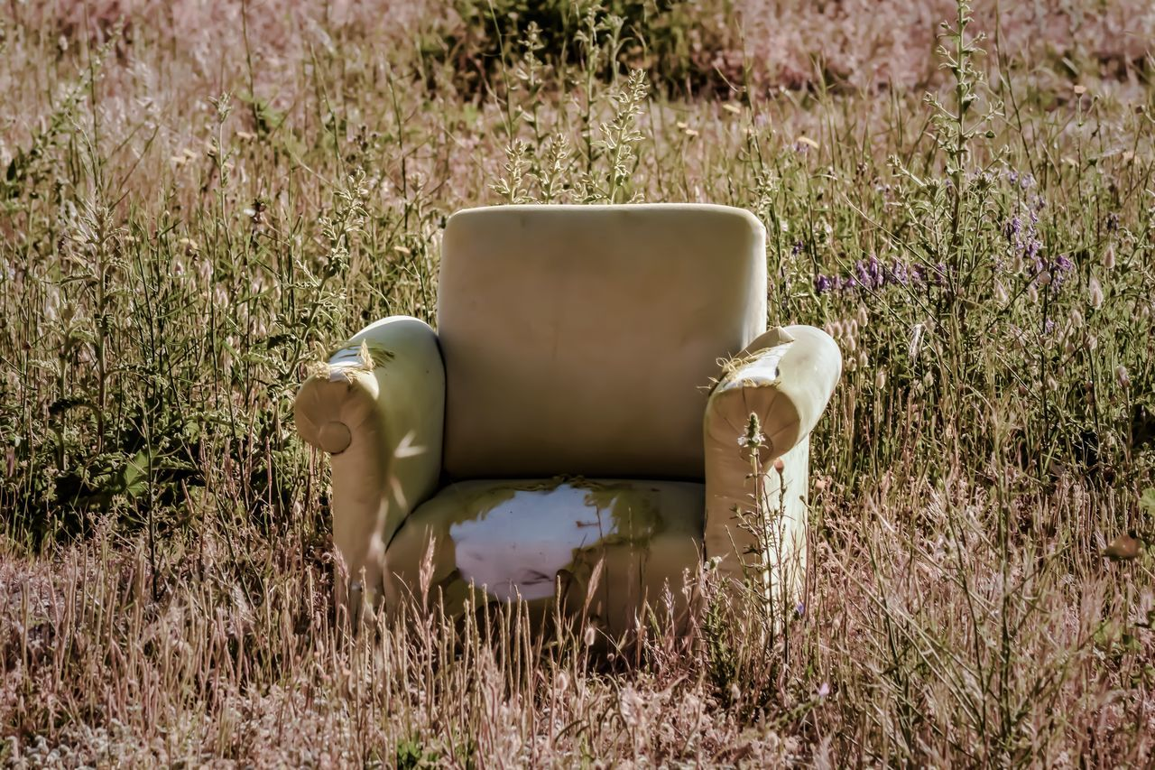 Abaondoned Sofa In Field