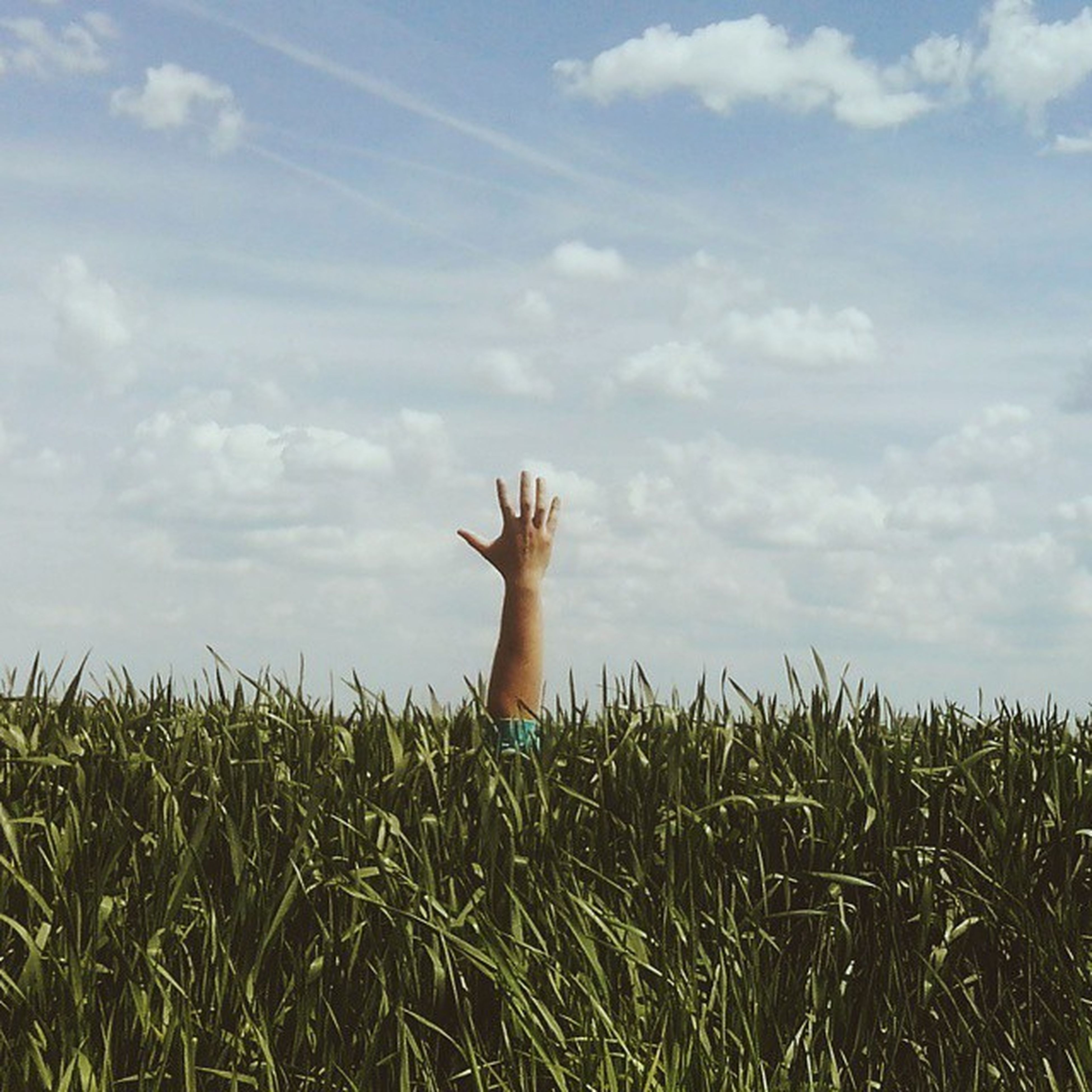 grass, sky, field, lifestyles, leisure activity, grassy, person, nature, tranquility, plant, beauty in nature, growth, cloud - sky, tranquil scene, green color, standing, outdoors, scenics
