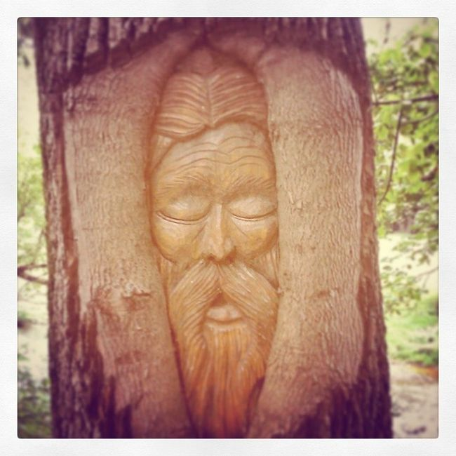 Treeface Art Awesome CarvingTalent Tree People Sleeping