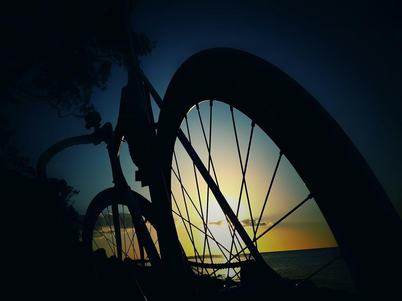 Wheelart Trackbike Fixieporn Sunset Just Ride