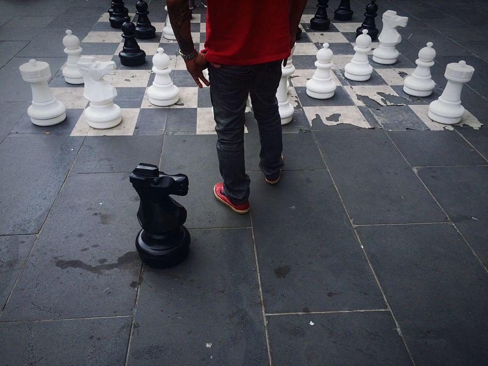 Beautiful stock photos of players, Animal Representation, Australia, Board Game, Chess