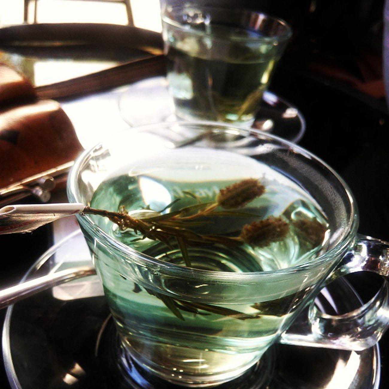 Mavi çay Adimlar Kitap