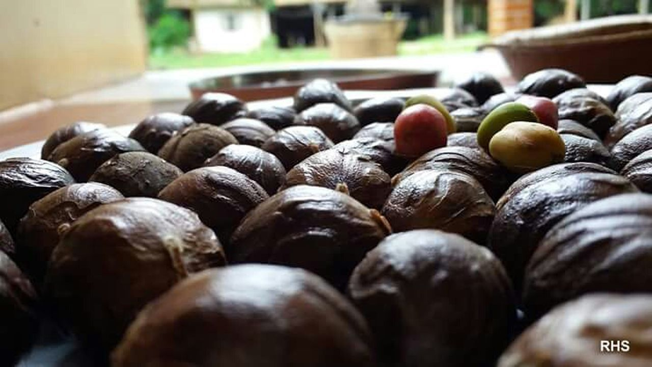 healthy eating, food and drink, food, freshness, large group of objects, close-up, no people, indoors, fruit, olive, day, black olive