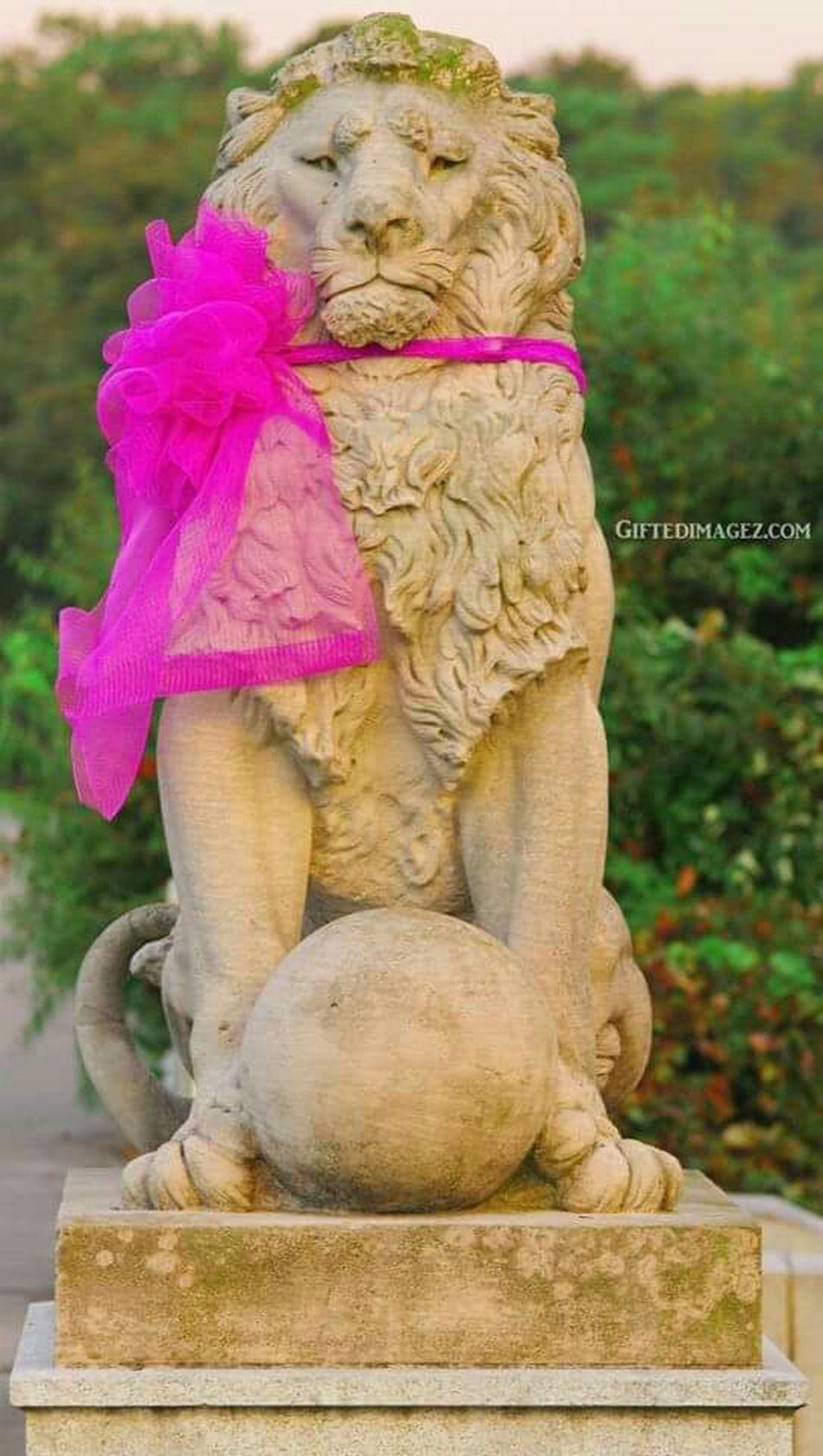 Lions Vaphotography Lionstatues Photographer Outdoor Photography Tamron 70-200mm F/2.8 Landscape_photography