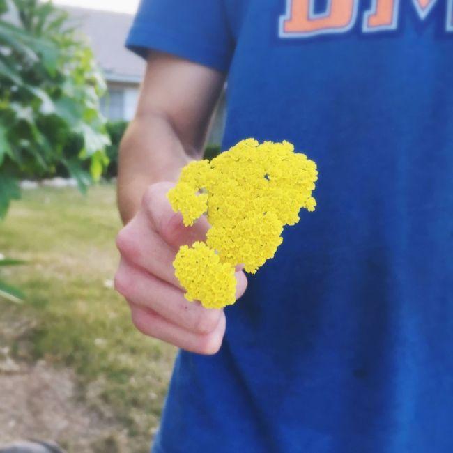 Beauty is in the details Yellow Flowers Little Cute Amazingworld Alwayshandedflowers Sunset Mylove Man