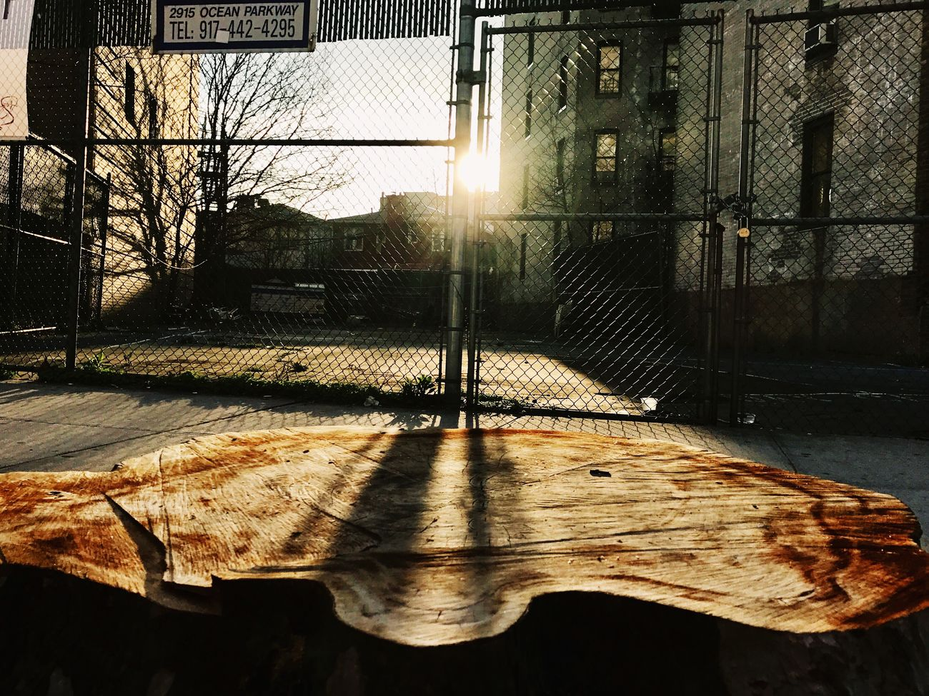 "Break The Mold ""Urban Sunrise"" Sunlight Outdoors Close-up Architecture Iphone7 Streetphotography Iphonephoto Mobilephotography New York Brooklyn Snapseed Beauty In Nature IPhone Photography Photographer Photography ShotOnIphone VSCO Art Is Everywhere"