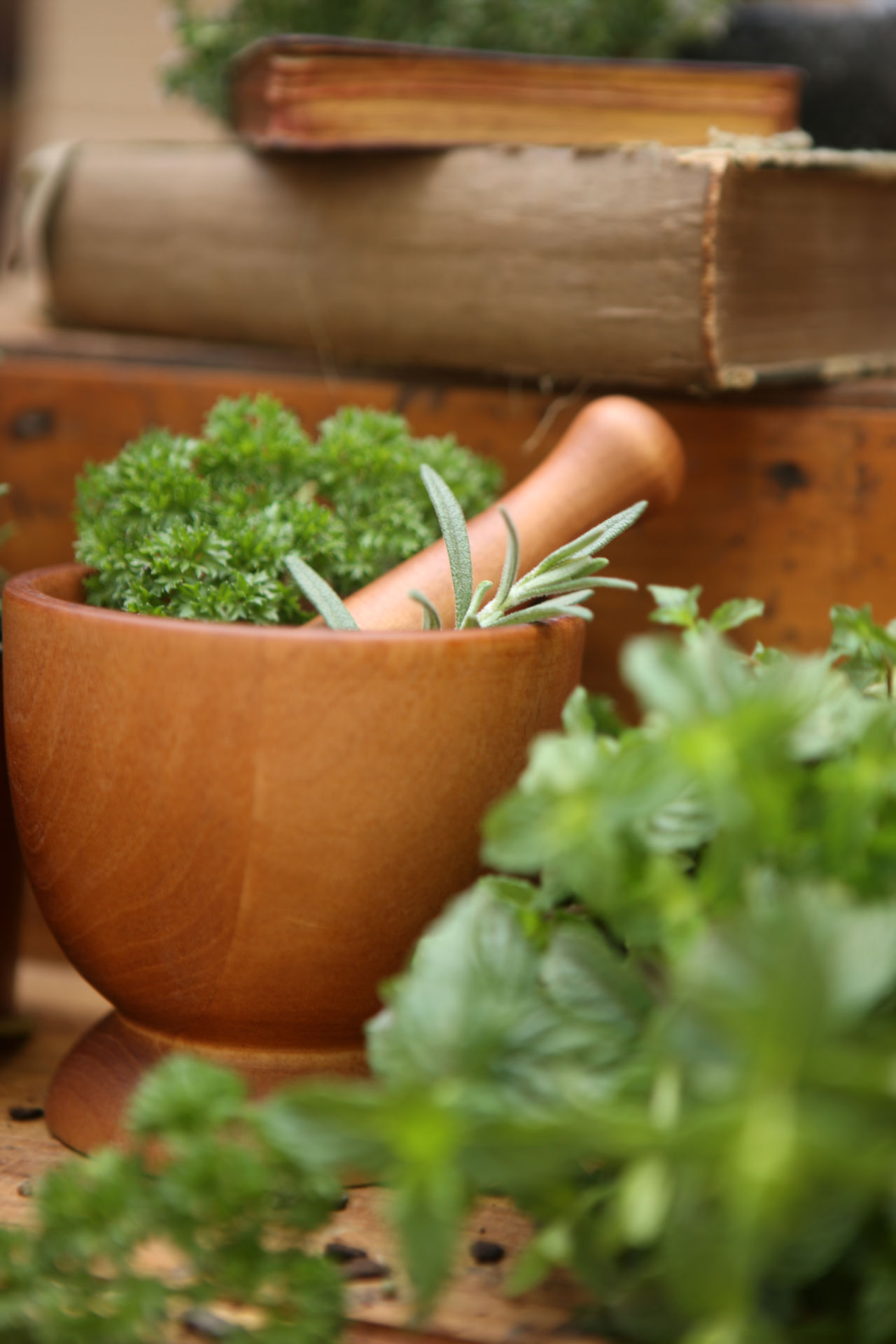 Working with herbs Close-up Day Freshness Green Color Herbal Herbal Medicine Indoors  Mortar Mortar And Pestle Mortar Pestle Nature Plant