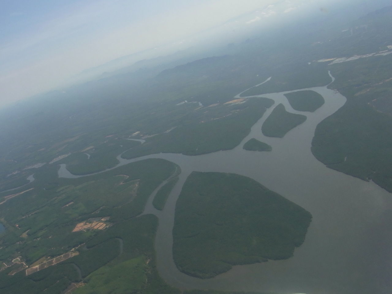 Aerial View Of River And Forest