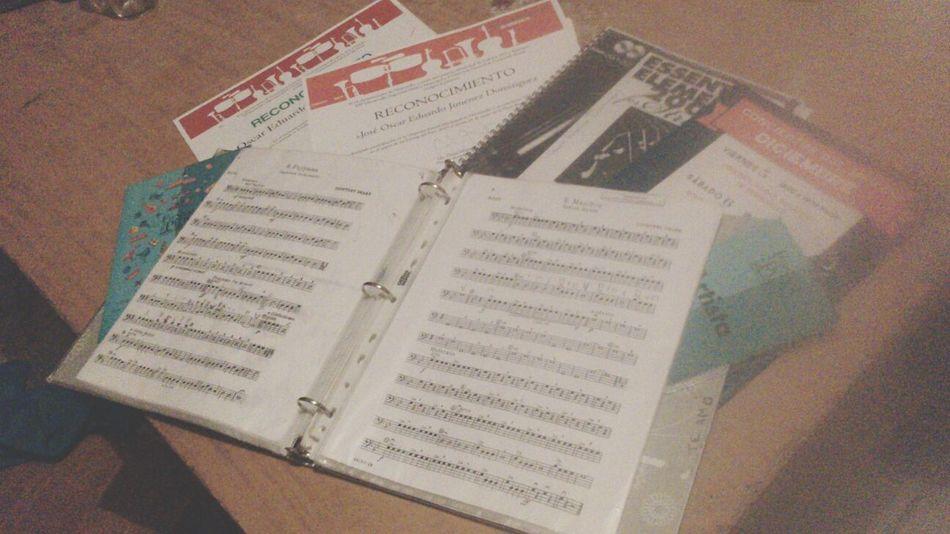 Recuerdos de la experiencia:3 Contrabass Musicajovendelpitic Fiestasdelpitic2015 Contrabajistas