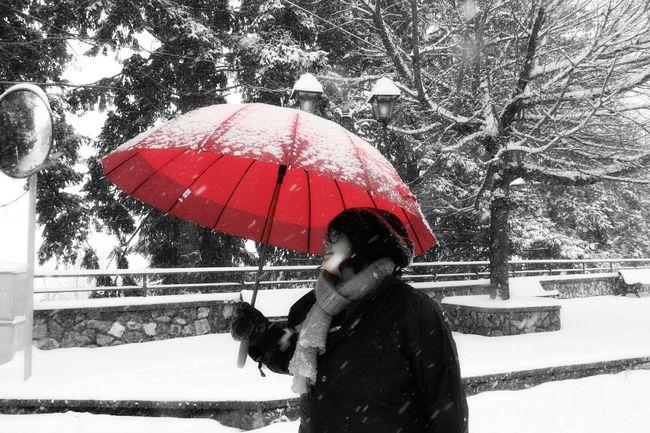 Neve Hanging Out Taking Photos Cheese! Relaxing Hi! Enjoying Life Taking Pictures Snow ❄ Snowing Snowseason Umbrella UmbrellaGirl Umbrella Lady Ombrello Rosso Ombrello Redumbrella Walking Walkinthesnow