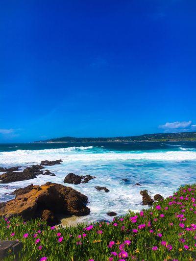 Ocean Beach Beauty In Nature Monterey