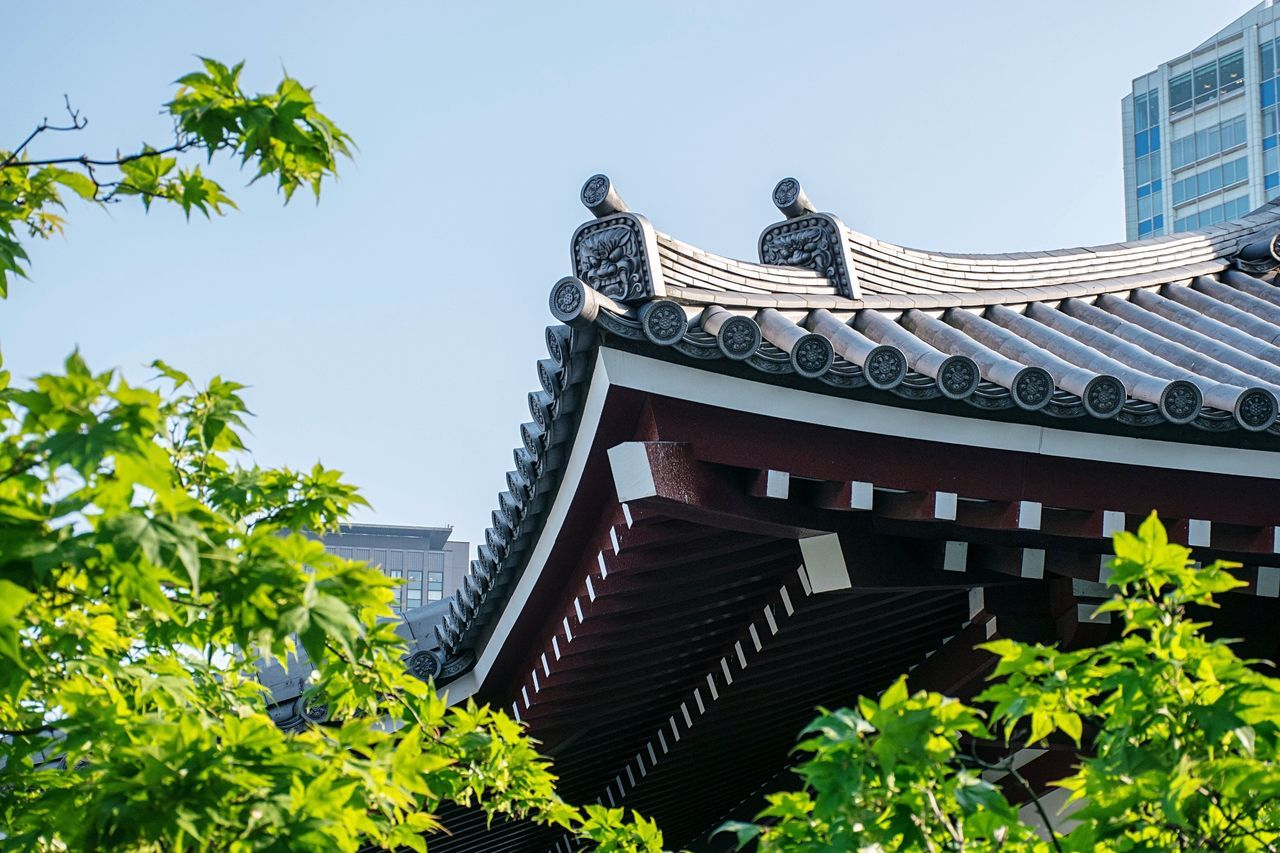 low angle view, built structure, day, architecture, building exterior, outdoors, roof, clear sky, tree, sky, no people, nature