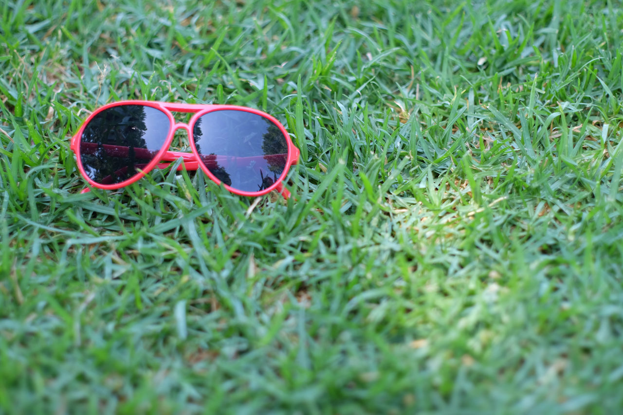 High Angle View Of Sunglasses On Grass