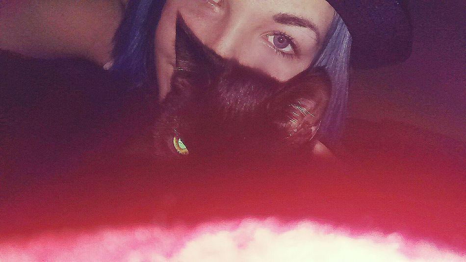 Katze Katzenliebe Hat BlueHair