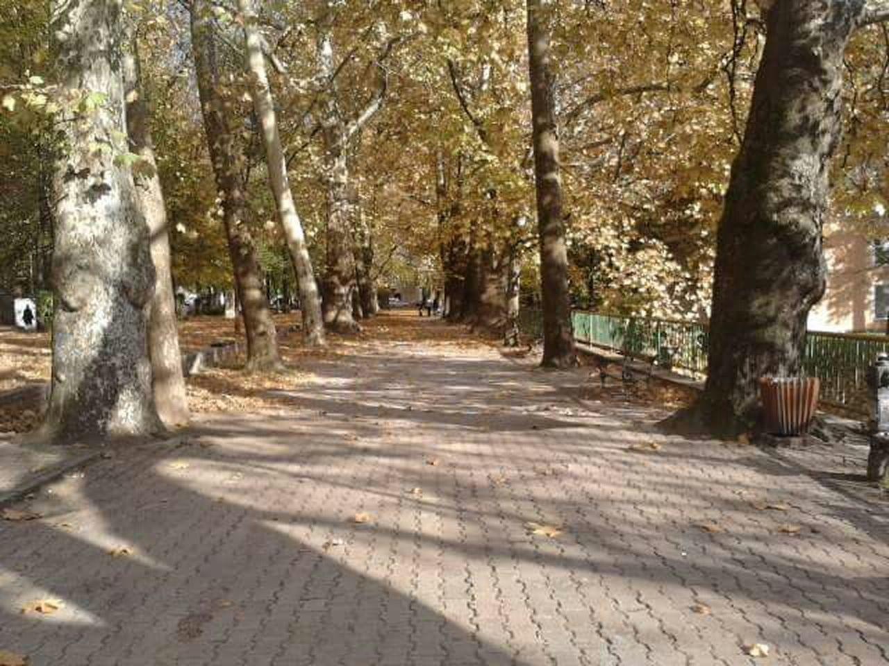 Autumn Colors Gelenderi