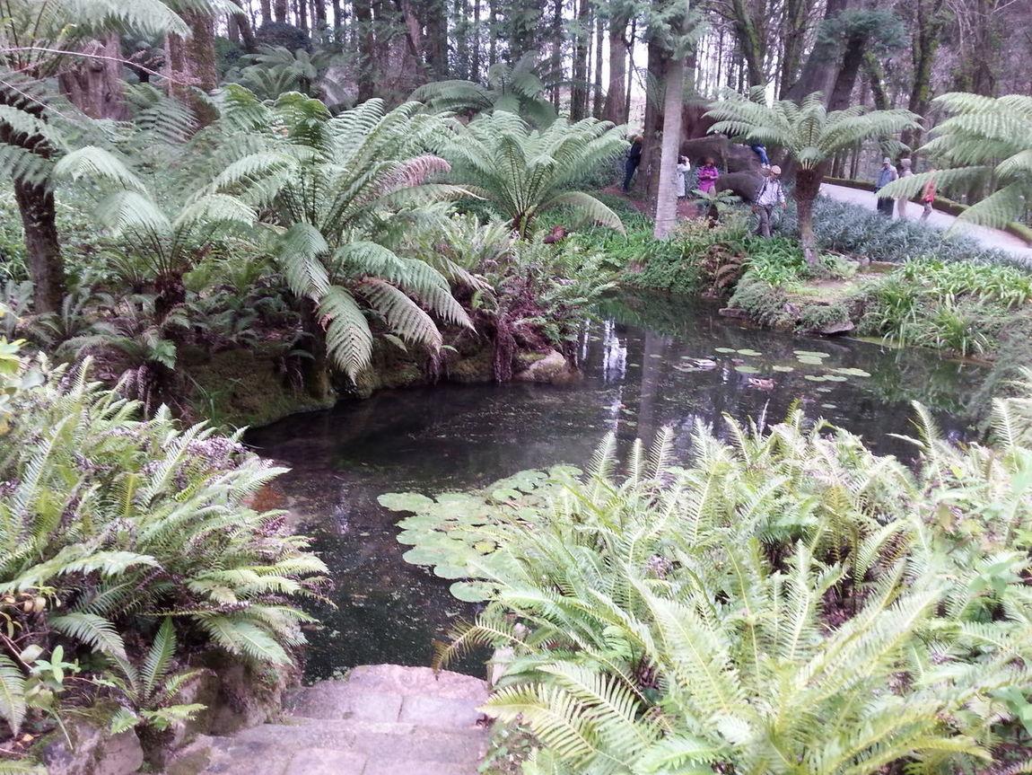 Best Place To Visit Natureza ☀⭐🍂🍀🌹😍❤ Nature