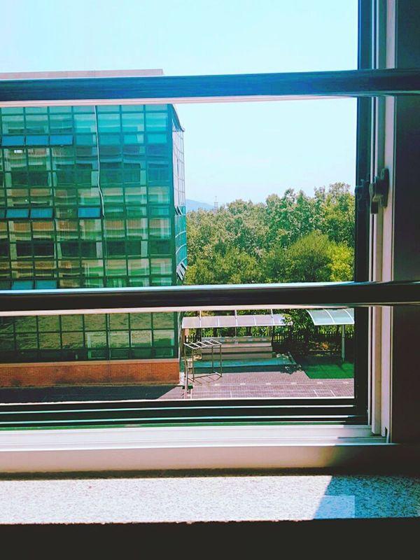 School Cymera Window View Korea Highschool Eighteen  Years Old Galaxy Note5 Sunlight First Eyeem Photo