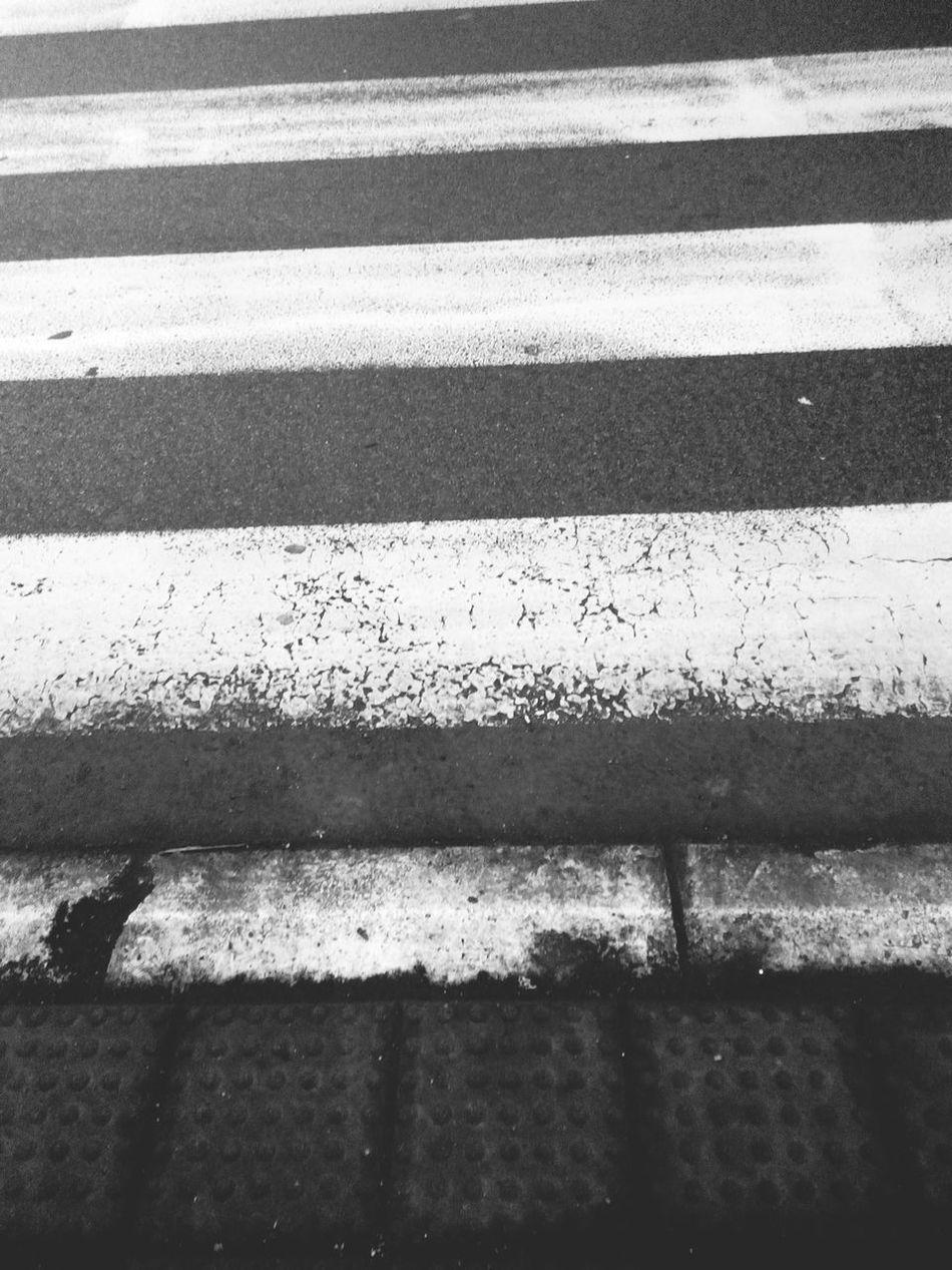 Zebra Pedestrian Walking Street