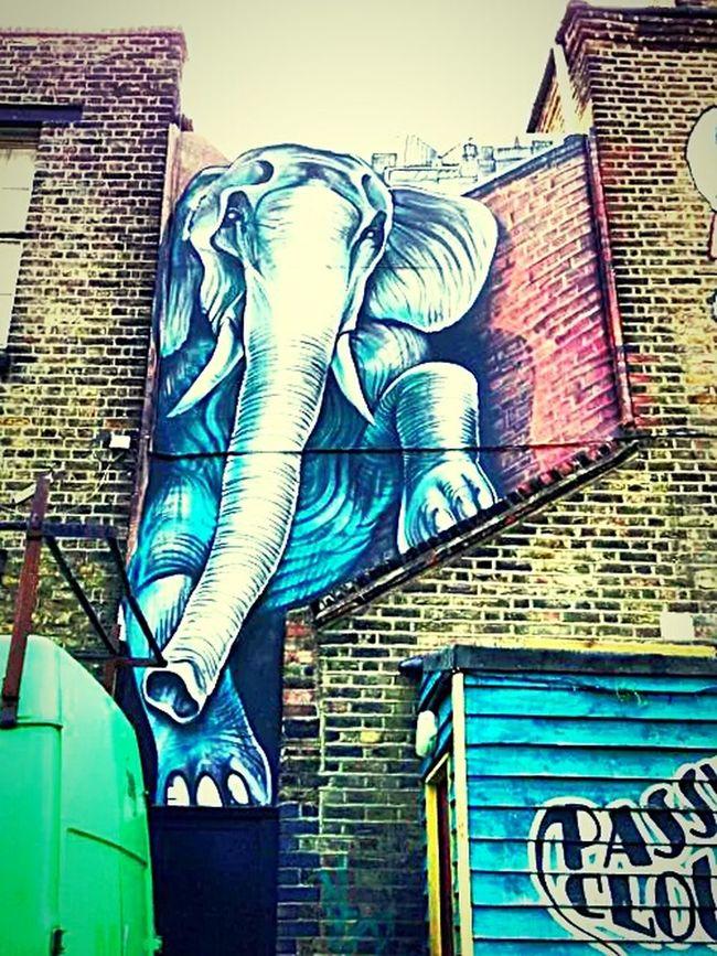 Woahwoahwoah Elephant Tag I LOVE PHOTOGRAPHY